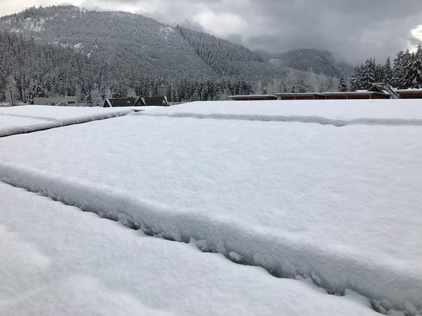 Blank of snow S-5.jpg