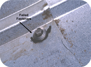 Failed Fasteners on Roof-1