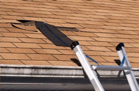 S-5!® - Damaged asphalt shingles